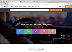 برنامج تصميم موقع سوق واعلانات مبوبة - صفحة بداية 11 صورة مصغرة