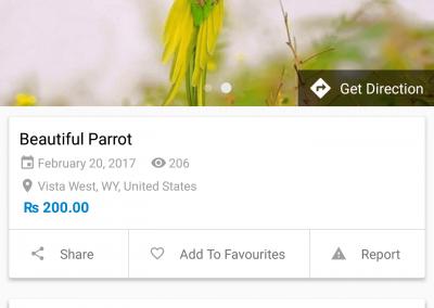 تصميم برنامج موقع سوق إلكتروني - تطبيق جوال عرض طائر مصور